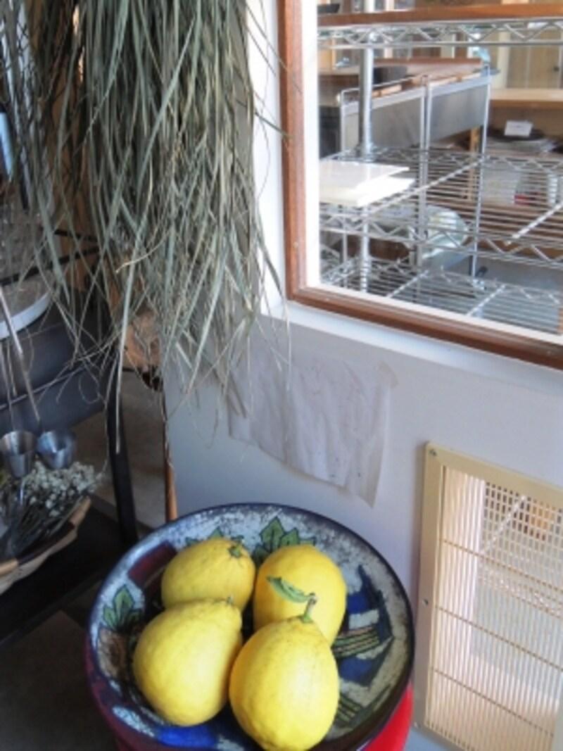 ポンデローザとサービスのお茶用のレモングラス