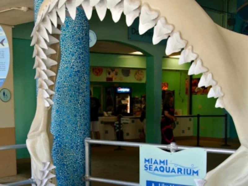 マイアミ水族館