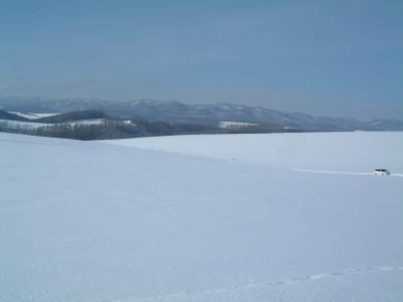 雪に包まれた丘がいくつも連なる冬の美瑛