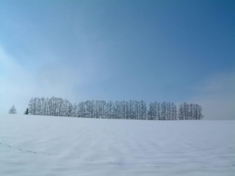 マイルドセブンの丘の冬