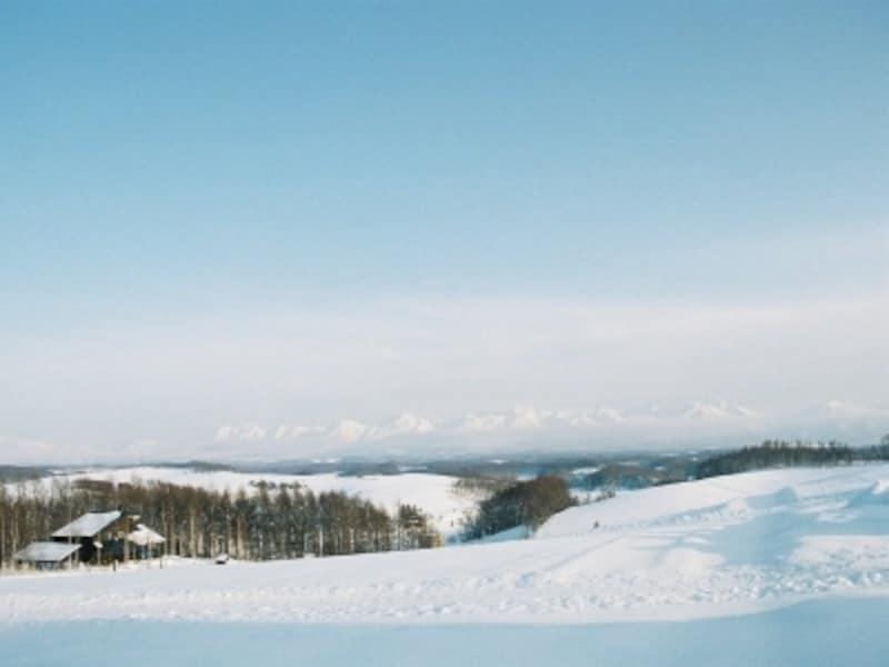 冬の四季彩の丘からの眺め