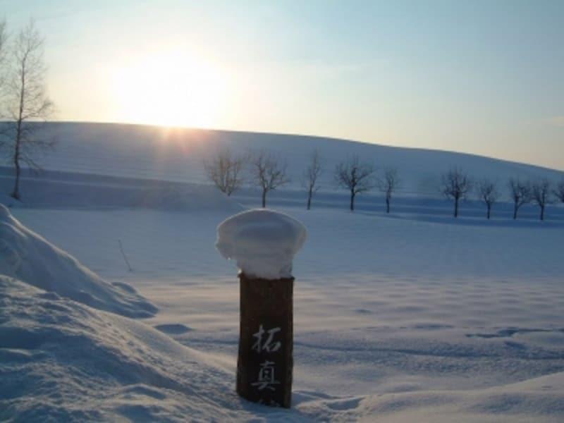 拓真館近くの雪の風景