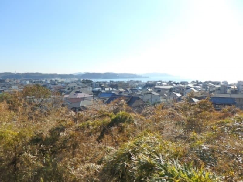 長谷寺の見晴台から望む海