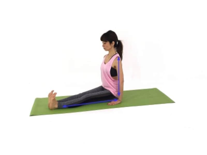 ダンダーサナundefined吐く息とともにお腹を腰に引き寄せドローイングしながら、背骨を伸ばします。あごを軽くひき、胸を引き上げ、肩は下げて、美しい姿勢をキープ。かかとを前に突き出し、膝肉をギュッと締めて引き締めましょう!