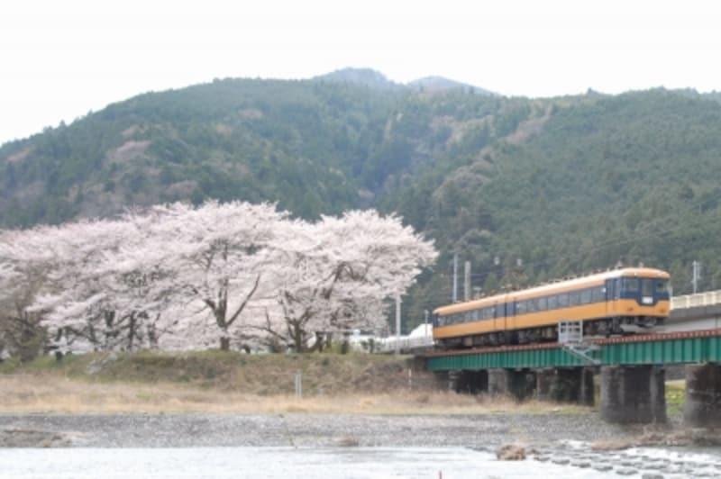 元近鉄の特急電車