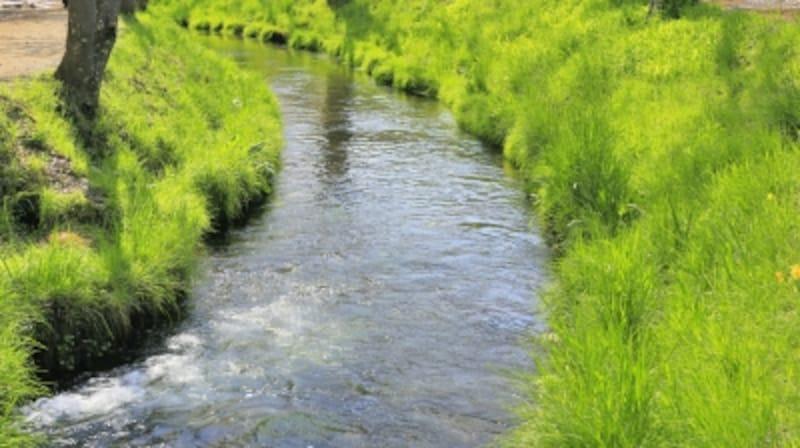 河川の流域は、地盤が脆弱なエリアも多いため、揺れが大きくなりがち