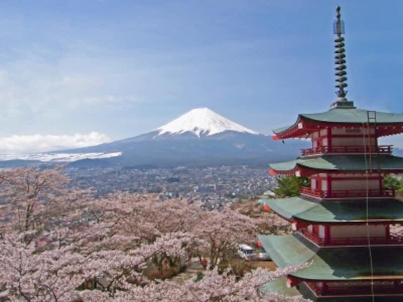 新倉山浅間神社の桜