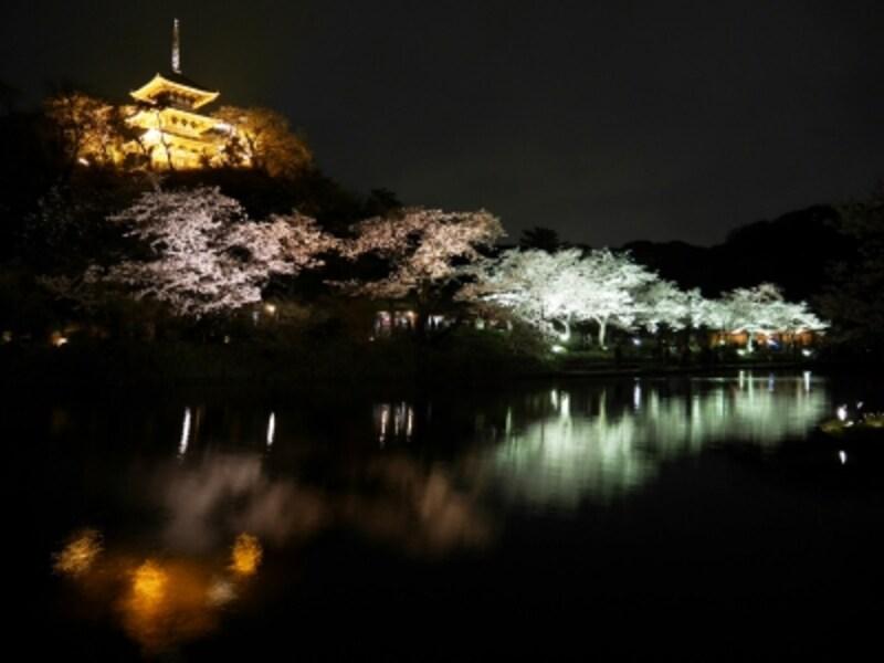 ライトアップされた桜並木や三重塔が大池にうつりこみ、幻想的(2017年4月8日撮影)