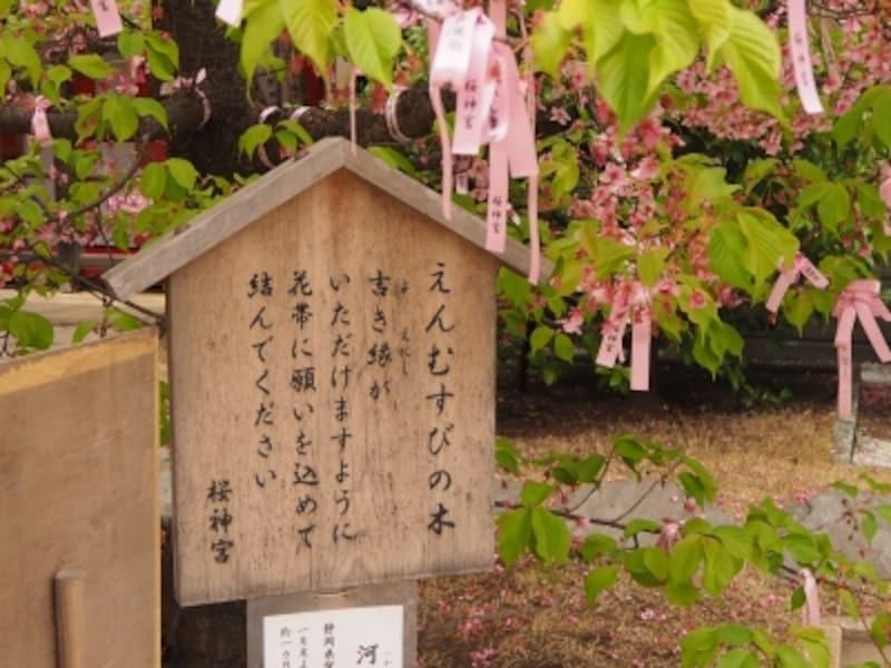 桜神宮では花帯は社務所でいただける。初穂料は500円。