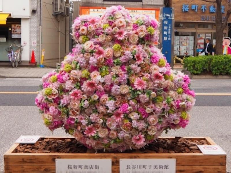 桜が咲くまではこちらのお花を観賞