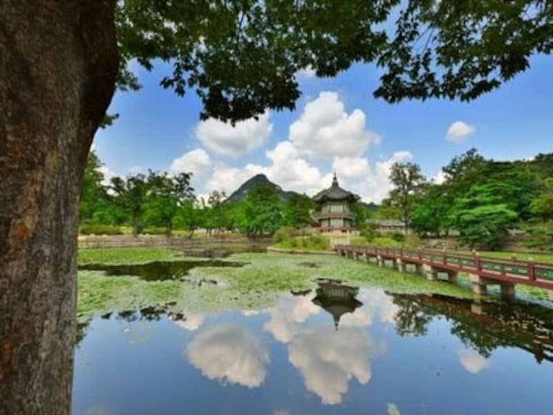香遠亭へ続く端もまた美しく、まわりをとりまく池もまた風流