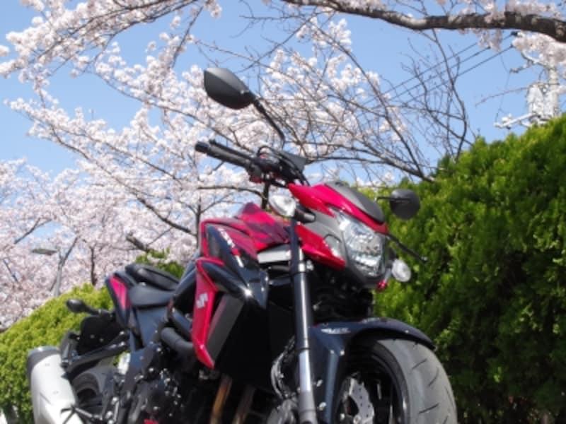桜が舞い散る中での試乗となった!日本のバイクには桜が良く似合う!