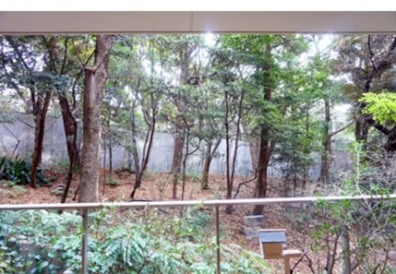 プラウド南麻布の庭写真