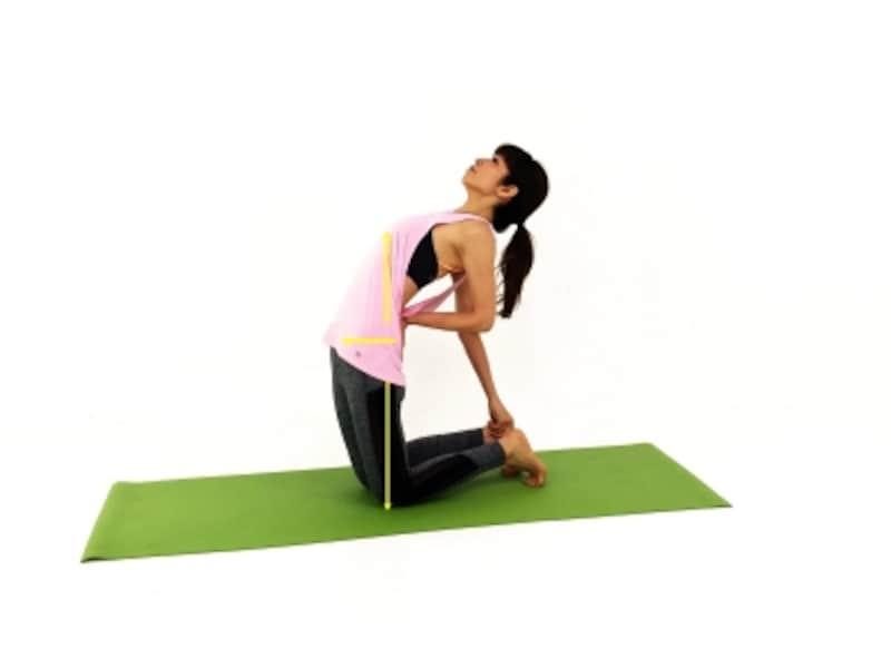 ウシュトラーサナ2undefined腰は前に、胸は天井方向に押し出したまま、右手で右踵に手を添えます