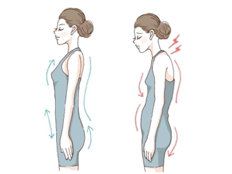 姿勢が悪いとボディラインにも影響が!逆に言えば、姿勢を正せるようになればスタイルアップが叶います。
