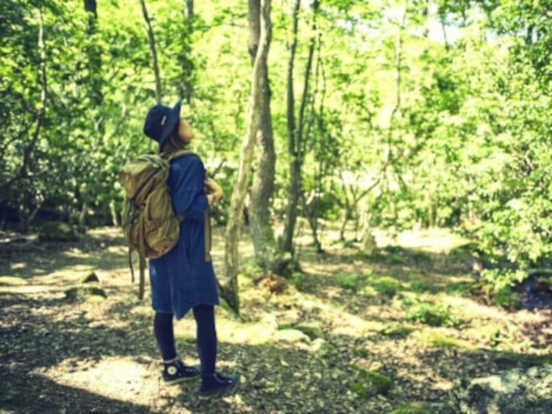 森林の中で歩く女性