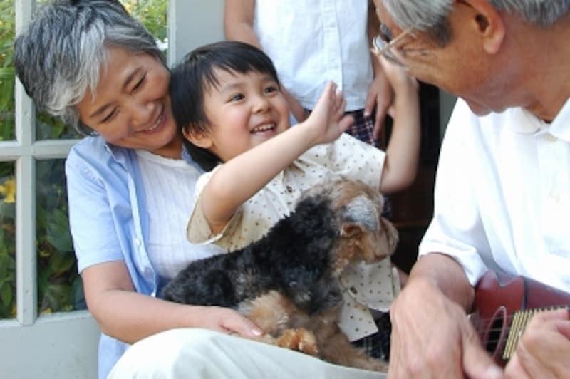 孫・愛犬と過ごす祖父母