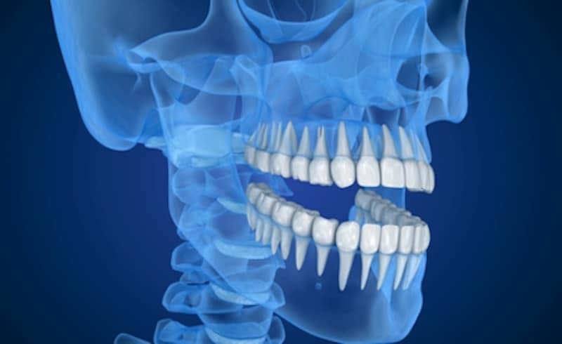 歯周病と歯の根の関係