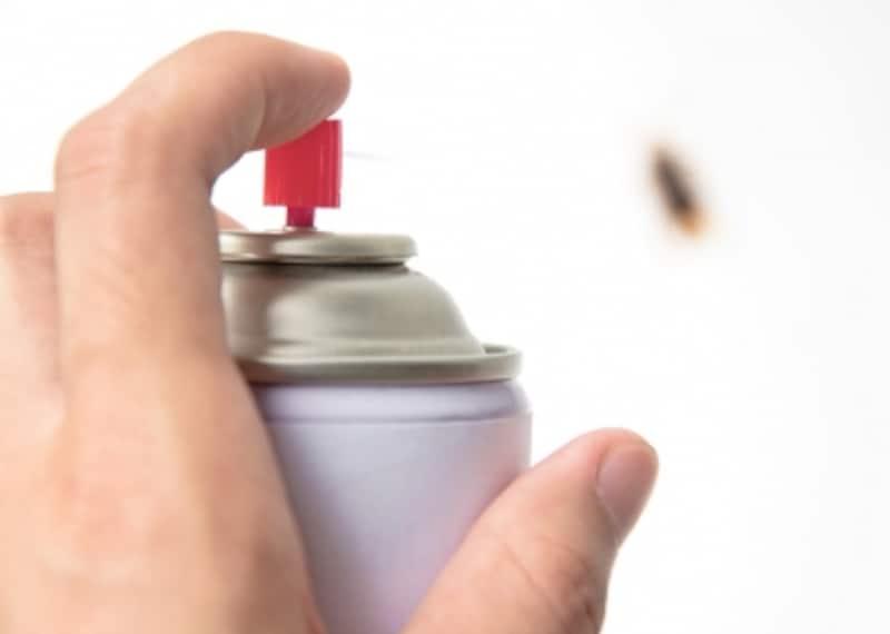 ゴキブリやコバエ、蜘蛛など、一人暮らしでよく出る害虫たちの特長と対策