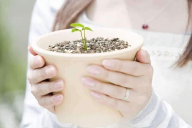 業績変化率が大きい銘柄は成長が期待できる!?