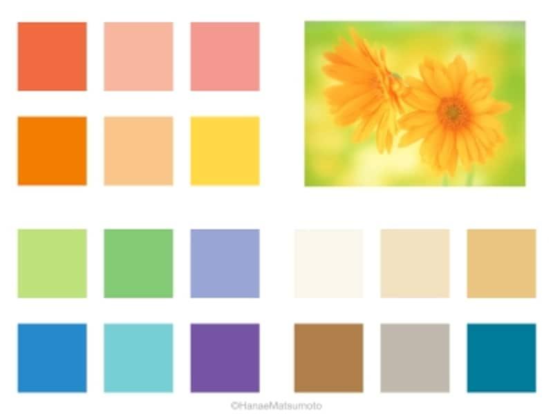 スプリングタイプは、イエローベースの中でも、色相のバリエーションは幅広く、明るい色(高明度)、鮮やかな色(中~高彩度)が似合います