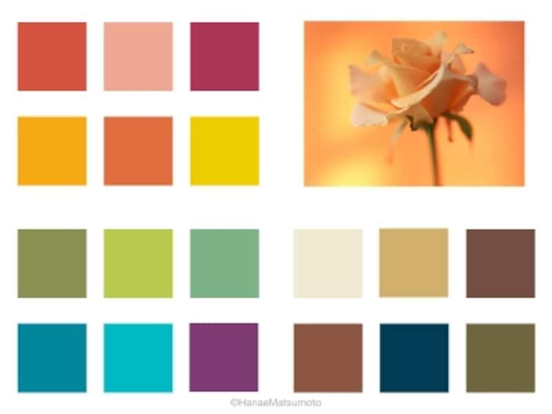 オータムタイプは、イエローベースの中でも、暗い色、濃い色が似合います。オレンジやグリーン系が多く、低~中明度、低~中~高彩度まで、バリエーションに富んでいます