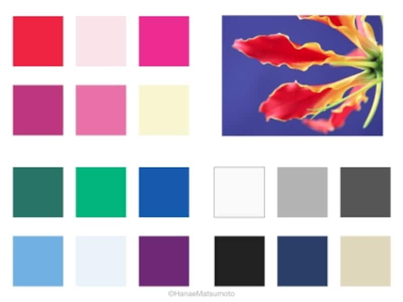 ウィンタータイプは、ブルーベースの中でも、鮮やかな純色(中明度・高彩度)、シャーベットのような淡い色(高明度・低彩度)が似合います