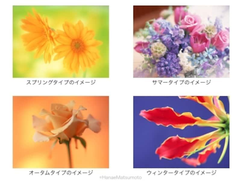 パーソナルカラーの4つの基本タイプのイメージ。スプリングタイプは春に咲く花を、オータムタイプは実りの秋をイメージするとよいでしょう。ウィンタータイプは鮮やかな色、サマータイプはウィンタータイプの色に霧のベールをかけたような柔らかい色というように、それぞれ特徴があります