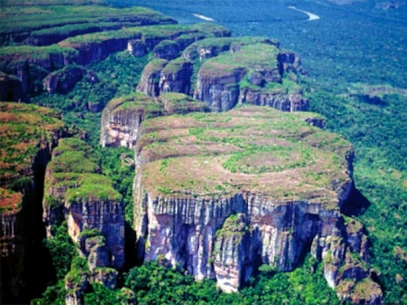 コロンビアの世界遺産「チリビケテ国立公園-ジャガーの生息地」