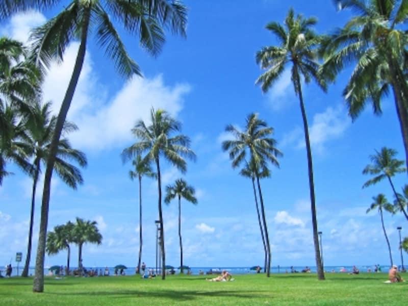 ハワイ旅行にマストなアイテム、便利なアイテムとは?