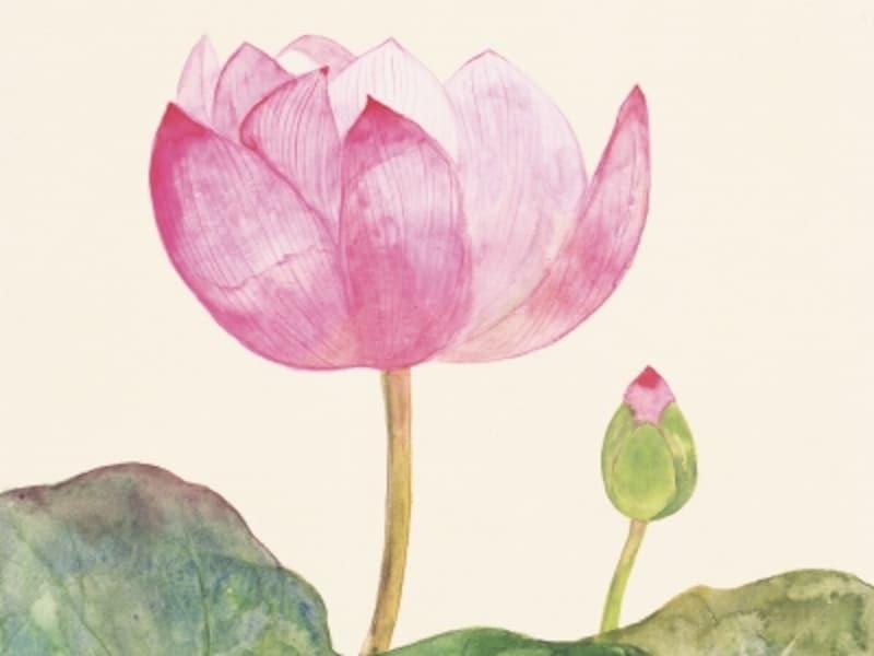 功徳,仏教