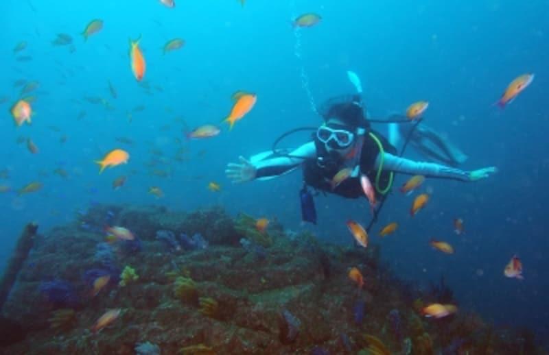 スキューバ,ダイビング,中性浮力,浮力コントロール,肺のトリミング,ウエイト