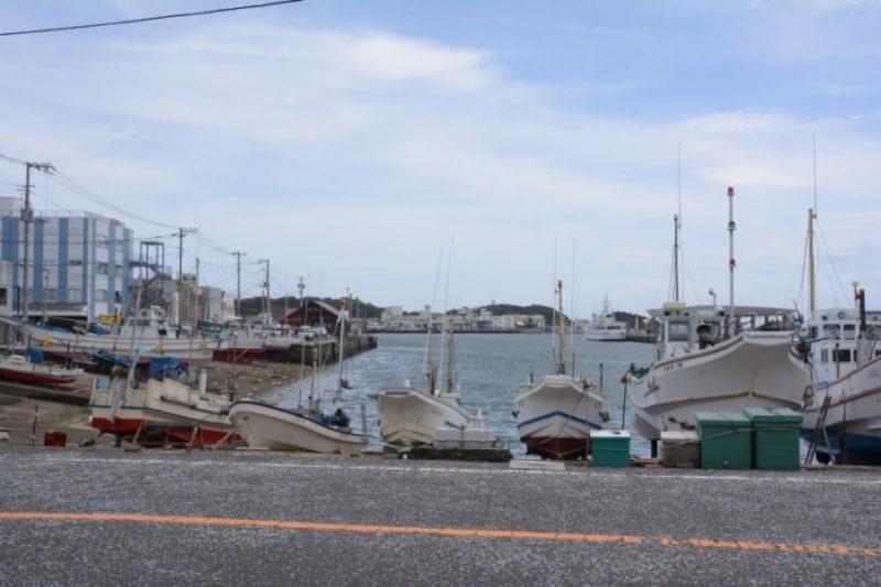 漁船が停泊する三崎港
