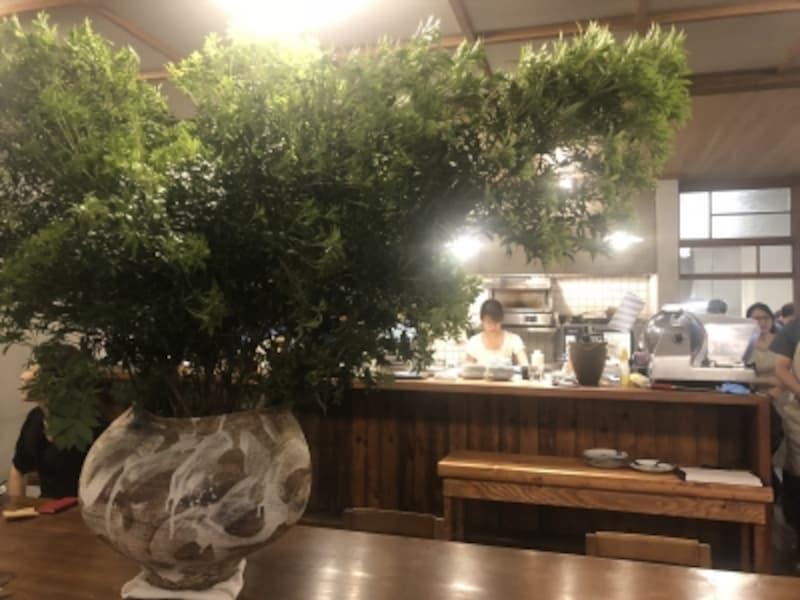 千葉の陶芸家、浜名一憲さんの大きな壺に、季節の緑がのびのびと豊富に生けられている