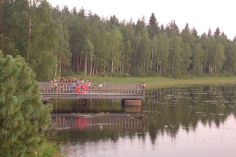 フィンランド人と森