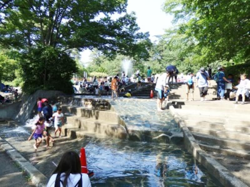 水遊び場は巨大な水のオアシス