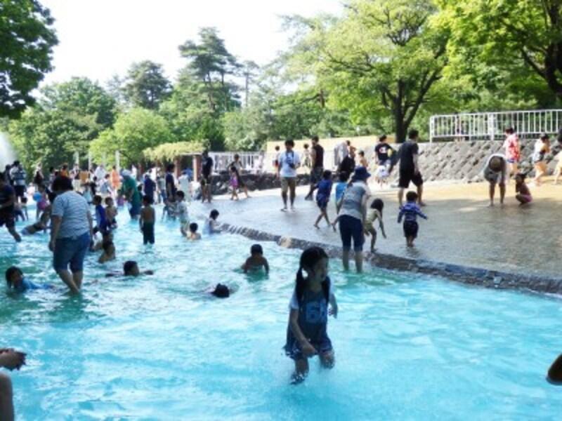 水遊び場のじゃぶじゃぶ池
