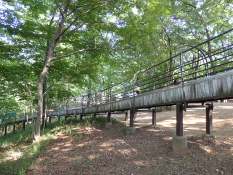 延々と続く雑木林をすり抜ける滑り台