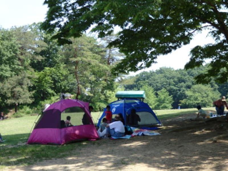運動広場を囲むテント