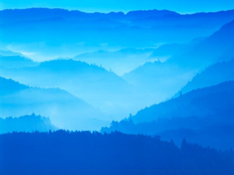 青が好きな人は、夢を叶えるために、計画的に貯蓄や運用に取り組む傾向があります