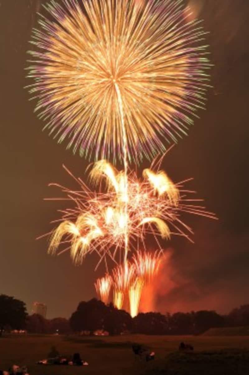 高崎の夏を彩る花火