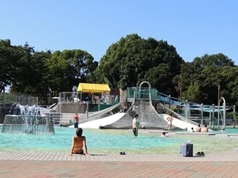 昭和記念公園の冒険プール