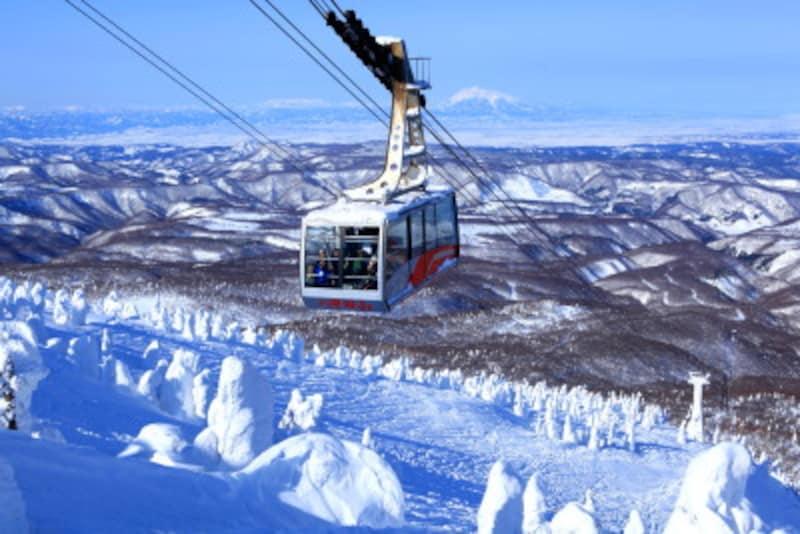 青森 観光 季節 冬 八甲田
