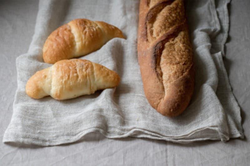 犬 パン 食パン 食べていい 食べちゃった 与えていい 量 食べちゃだめ