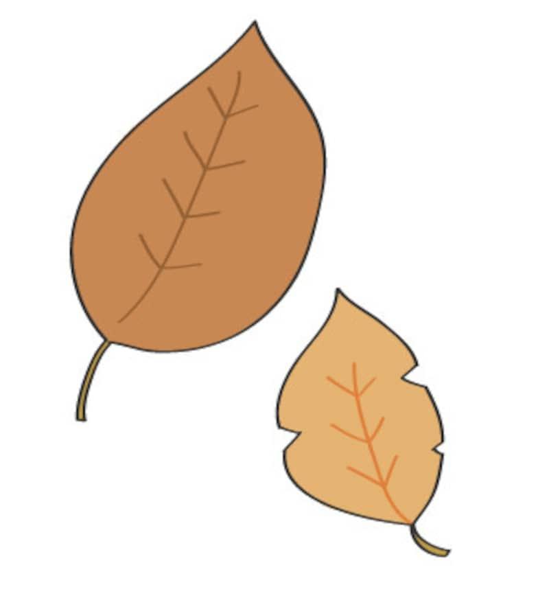 秋 イラスト 落ち葉 カラー かわいい