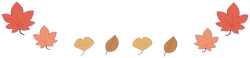 秋 イラスト 紅葉 落ち葉 カラー フレーム