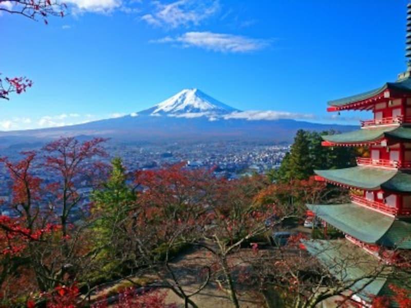 新倉山浅間公園の紅葉