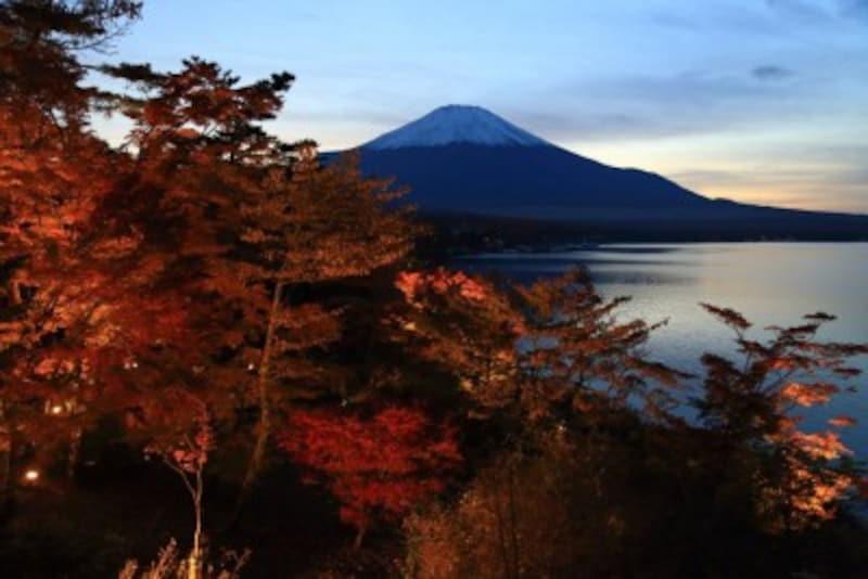 夕焼けの渚・紅葉祭り