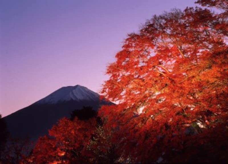 富士河口湖紅葉祭り