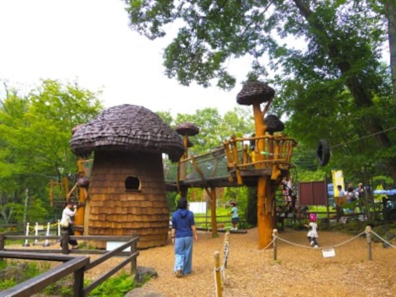巨大キノコの秘密基地とキノコタワー